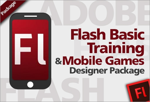 Flash Basic Training
