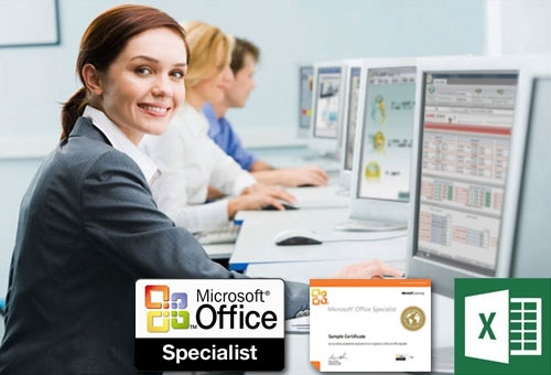 MS Specialist Excel