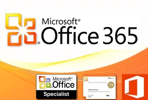 MS office 365 specialist